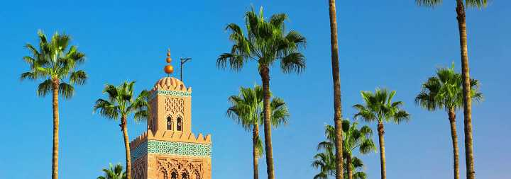 Minaret of a mosque truncating in the middle of palm trees in Marrakesh in Morocco
